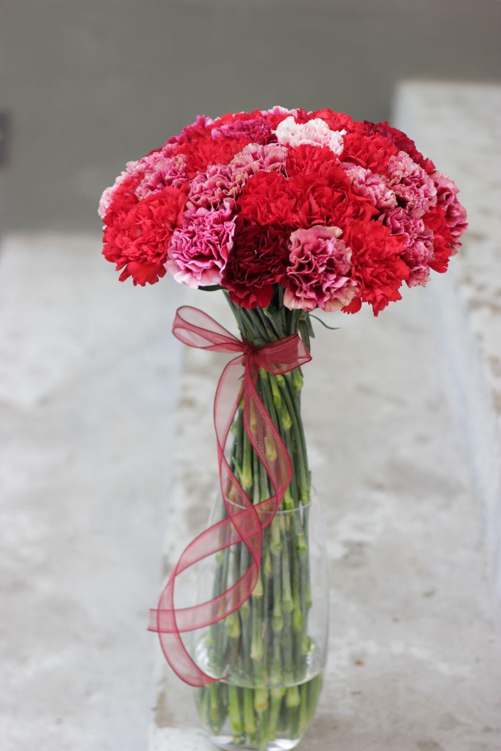 nelgid, elegantne nelgikimp, lillekimp, värilised nelgid