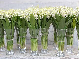 Lasteaia lõpetamise lilled - Kolm Lille lillepood