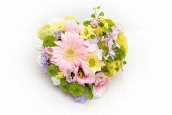 Pastele südamekujuline seade - Kolm lille lillepood