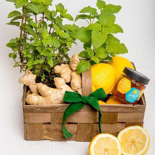 Tervisekorv ingveri ja sidruniga - Kolm lille lillepood