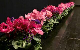 Filmimuuseumis saali kaunistus - Kolm Lille lillepood